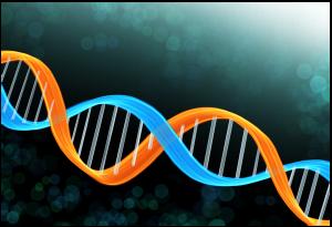 遺伝子のイメージ像